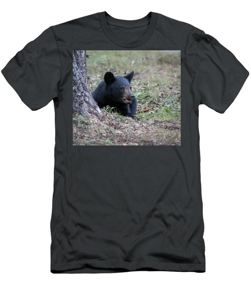 Men's T-Shirt (Slim Fit) featuring the photograph Black Bear Resting by Tyson and Kathy Smith