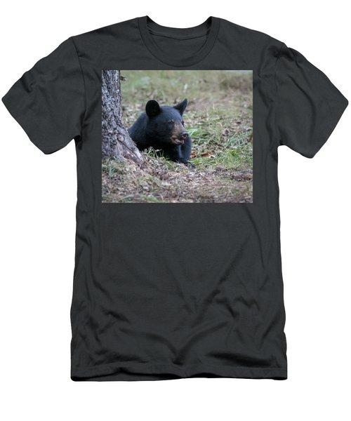 Black Bear Resting Men's T-Shirt (Athletic Fit)