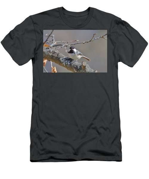 Men's T-Shirt (Slim Fit) featuring the photograph Black Capped Chickadee 1109 by Michael Peychich