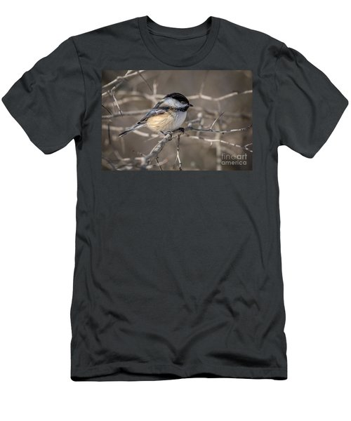 Black-capped Chickadee Iv Men's T-Shirt (Athletic Fit)