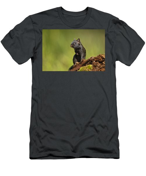 Black Chipmunk On Log Men's T-Shirt (Athletic Fit)