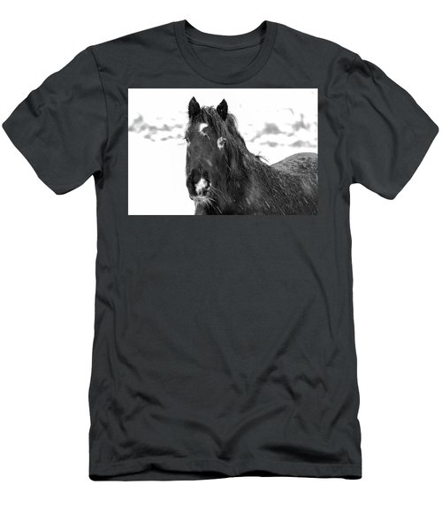 Black Horse Staring In The Snow Black And White Men's T-Shirt (Athletic Fit)