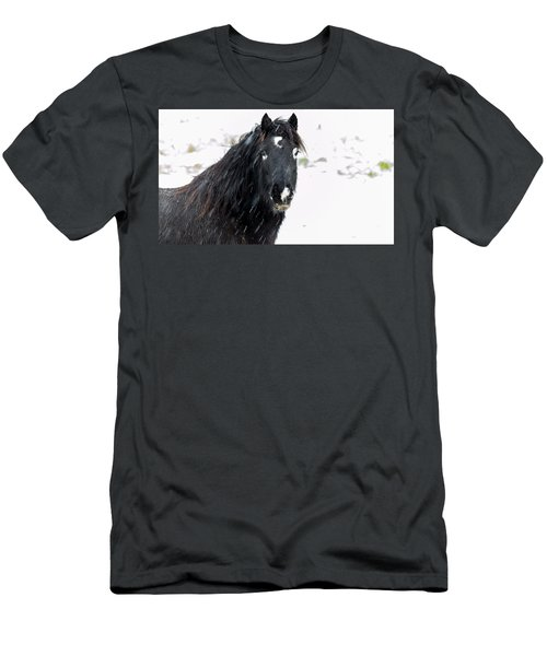 Black Horse Staring In The Snow Men's T-Shirt (Athletic Fit)
