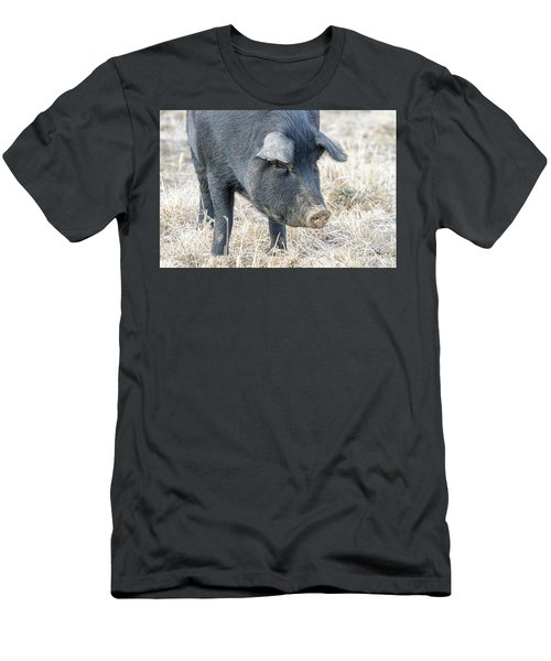 Men's T-Shirt (Slim Fit) featuring the photograph Black Pig Close-up by James BO Insogna