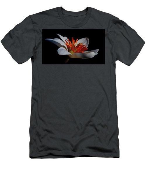 Bloodroot Art Men's T-Shirt (Athletic Fit)