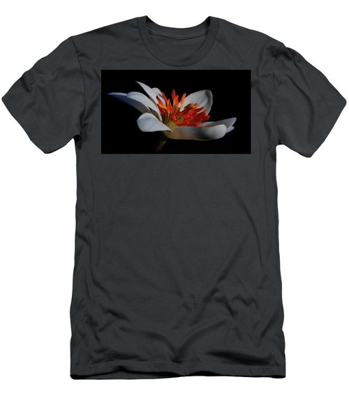 Bloodroot Art Men's T-Shirt (Athletic Fit)