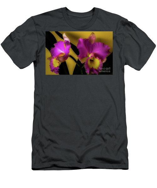 Blooming Cattleya Orchids Men's T-Shirt (Athletic Fit)