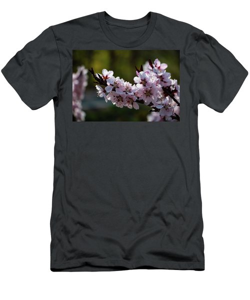 Blooming Peach Tree Men's T-Shirt (Athletic Fit)