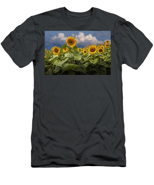 Blooming Sunflowers Against A Cloudy Blue Sky Men's T-Shirt (Athletic Fit)