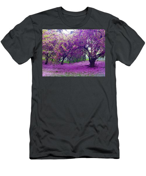 Blossoms In Central Park Men's T-Shirt (Athletic Fit)