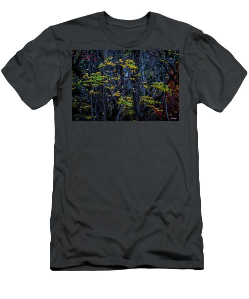 Blowin' In The Wind Men's T-Shirt (Athletic Fit)