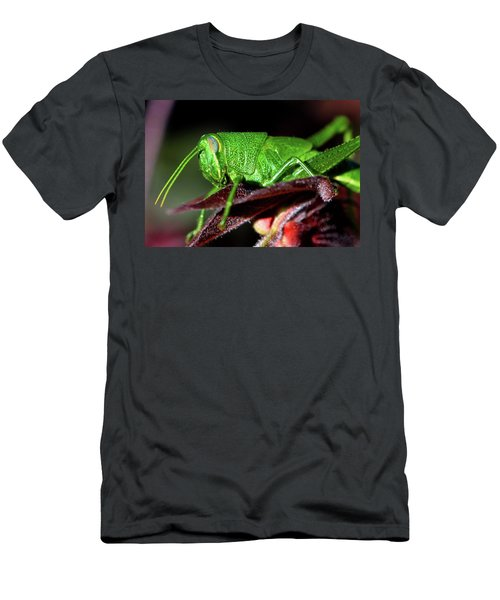 Blue Eyed Green Grasshopper 001 Men's T-Shirt (Athletic Fit)