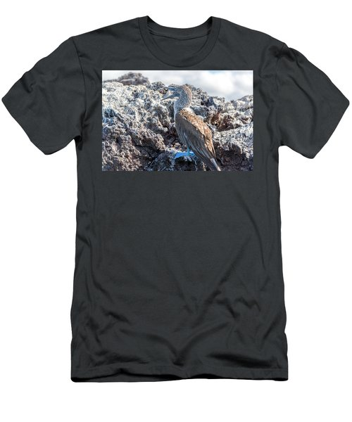 Blue Footed Booby Men's T-Shirt (Slim Fit) by Jess Kraft