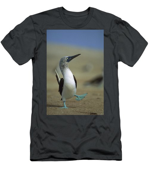 Men's T-Shirt (Athletic Fit) featuring the photograph Blue-footed Booby Sula Nebouxii by Tui De Roy