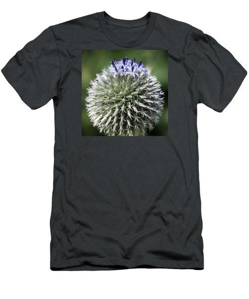 Blue Globe Thistle 3 - Men's T-Shirt (Athletic Fit)