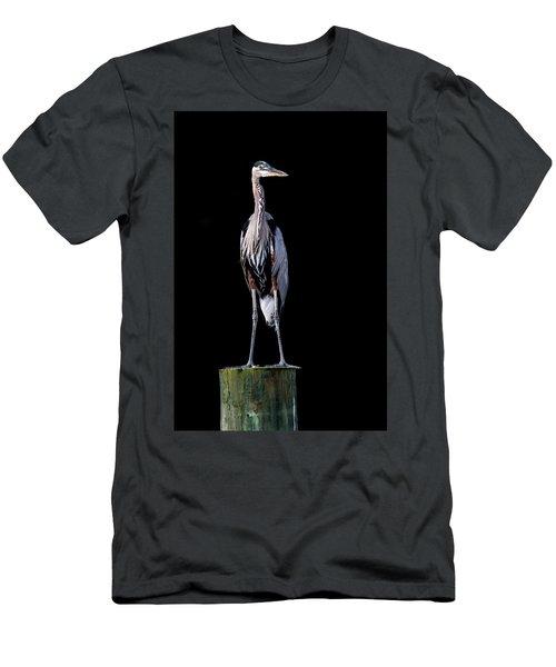 Blue Heron Prestige Men's T-Shirt (Athletic Fit)
