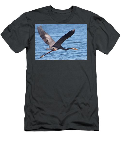 Blue Heron Wingspan Men's T-Shirt (Athletic Fit)