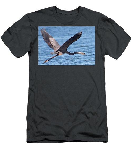 Blue Heron Wingspan Men's T-Shirt (Athletic Fit)