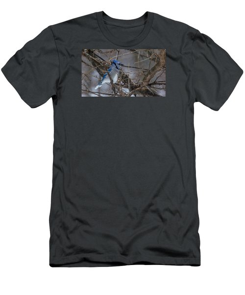 Men's T-Shirt (Slim Fit) featuring the photograph Blue Jay by Dan Traun