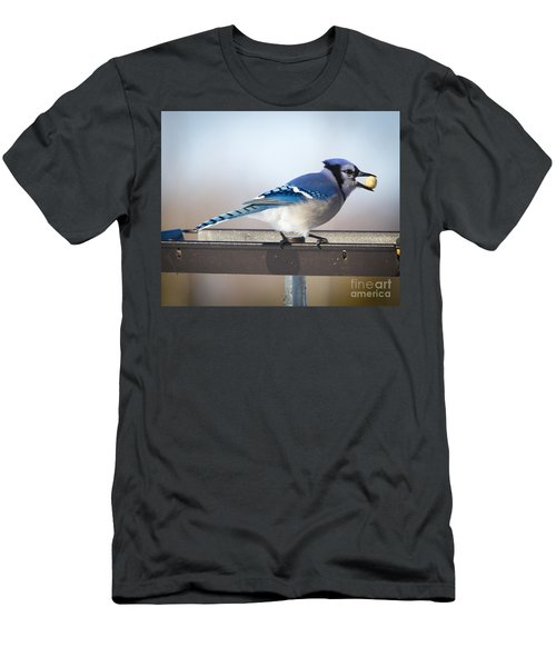 Blue Jay With A Mouth Full Men's T-Shirt (Athletic Fit)