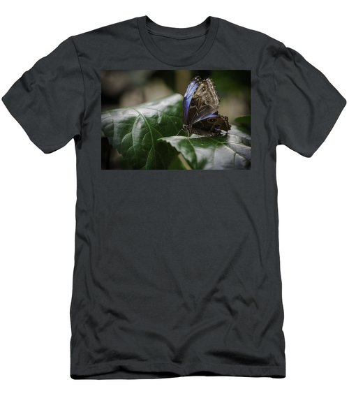Men's T-Shirt (Slim Fit) featuring the photograph Blue Morpho On A Leaf by Jason Moynihan