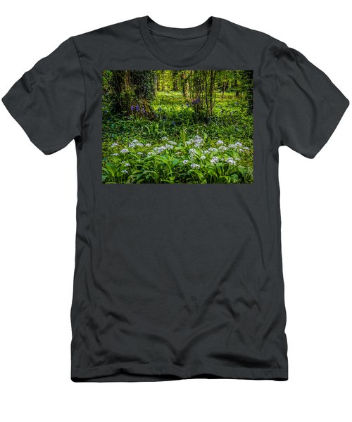 Bluebells And Wild Garlic At Coole Park Men's T-Shirt (Athletic Fit)