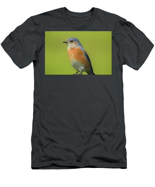 Bluebird Digital Art Men's T-Shirt (Athletic Fit)
