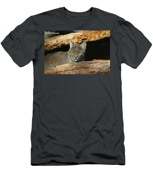 Bobcat Hiding In A Log Men's T-Shirt (Athletic Fit)