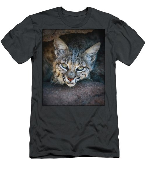Bobcat Stare Men's T-Shirt (Athletic Fit)