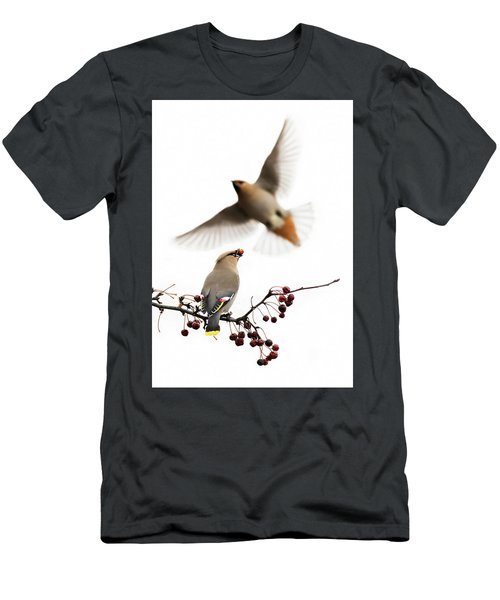 Men's T-Shirt (Slim Fit) featuring the photograph Bohemian Waxwings by Mircea Costina Photography