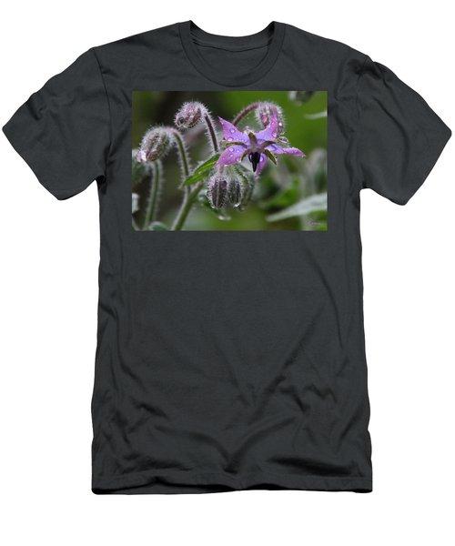 Borage Umbrella Men's T-Shirt (Athletic Fit)