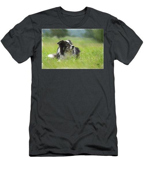 Border Collie - Dwp2189332 Men's T-Shirt (Athletic Fit)