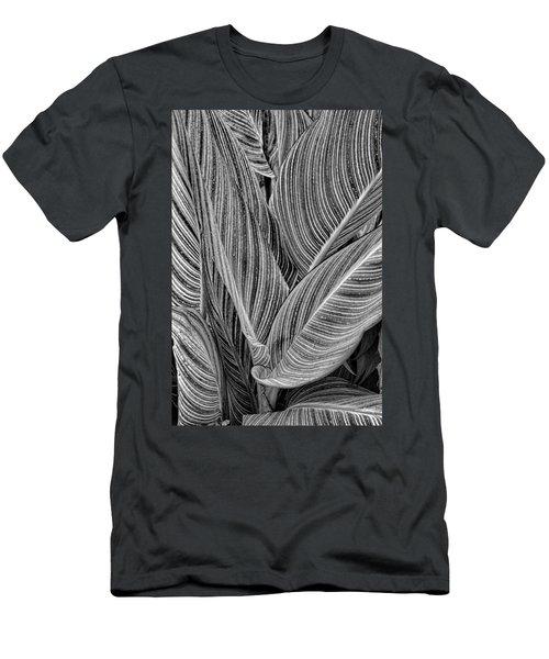 Boston Common Study 11 Men's T-Shirt (Athletic Fit)