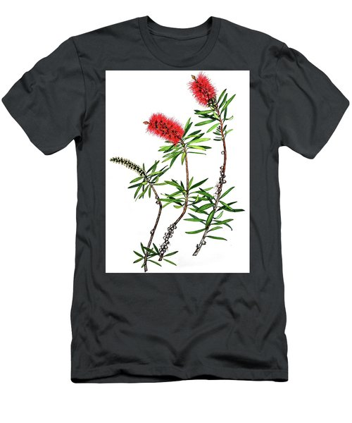Bottle Brush Men's T-Shirt (Slim Fit) by Heidi Kriel