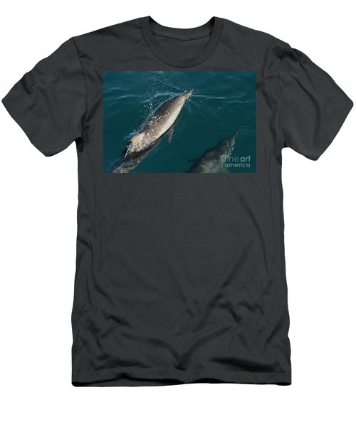 Bottle Nose Dolphin Men's T-Shirt (Athletic Fit)