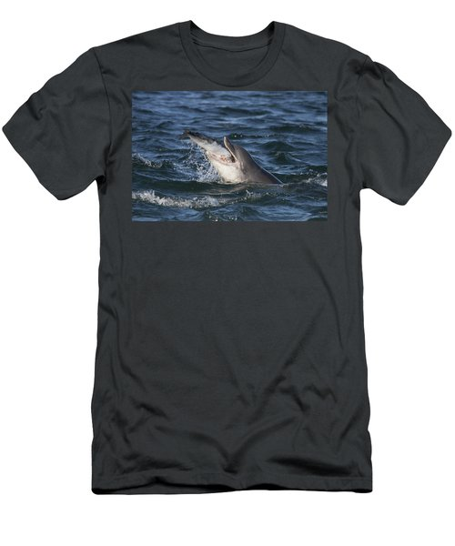Bottlenose Dolphin Eating A Salmon - Scotland #5 Men's T-Shirt (Athletic Fit)