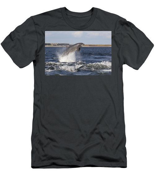 Bottlenose Dolphin - Scotland  #26 Men's T-Shirt (Athletic Fit)