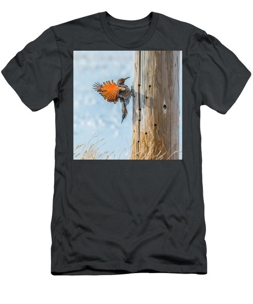 Brilliant Northern Flicker Woodpecker Men's T-Shirt (Athletic Fit)