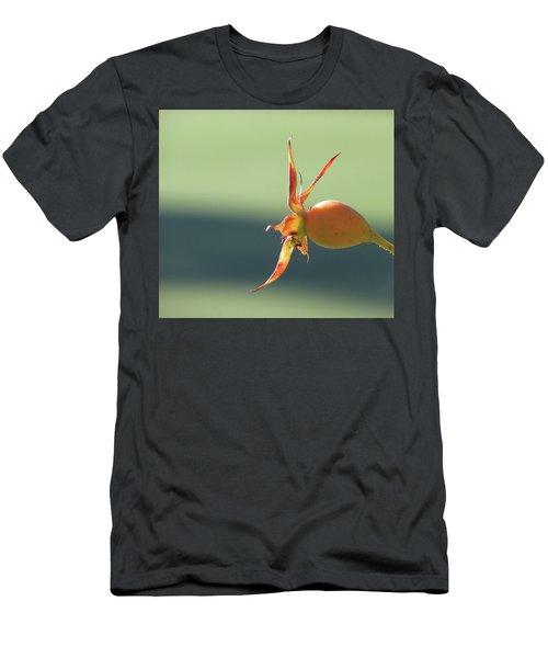 Brilliant Seed Pod Men's T-Shirt (Athletic Fit)