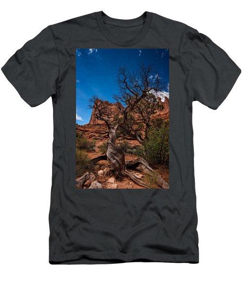 Bristlecone On Park Avenue Men's T-Shirt (Athletic Fit)