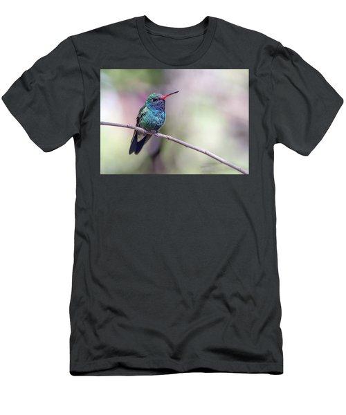 Broad-billed Hummingbird 2008-031718-1cr Men's T-Shirt (Athletic Fit)