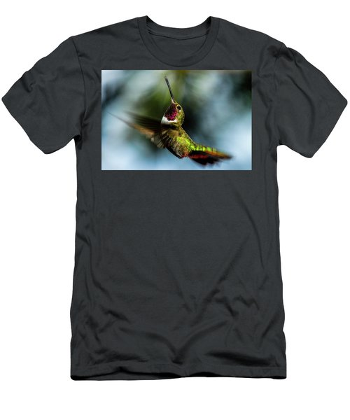 Broad-tailed Hummingbird In Flight Men's T-Shirt (Athletic Fit)