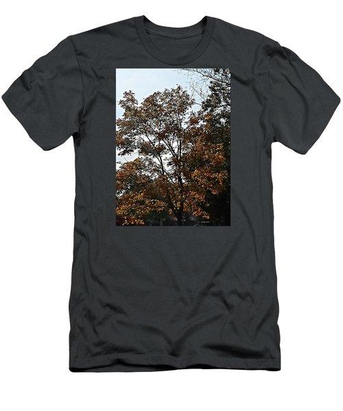 Brown Men's T-Shirt (Slim Fit) by Jana E Provenzano