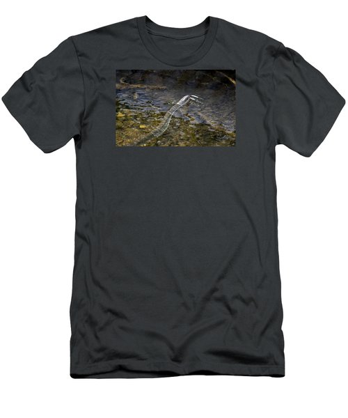 Brown Water Snake Men's T-Shirt (Athletic Fit)