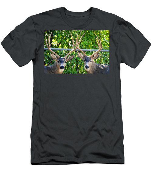 Buck Eyes Men's T-Shirt (Athletic Fit)