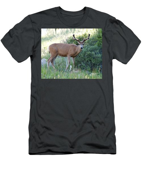 Buck In Velvet Men's T-Shirt (Athletic Fit)
