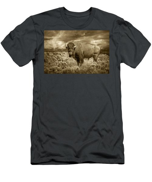 Buffalo Bison At Yellowstone In Sepia Men's T-Shirt (Athletic Fit)