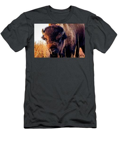 Buffalo Face Men's T-Shirt (Slim Fit) by Jay Stockhaus