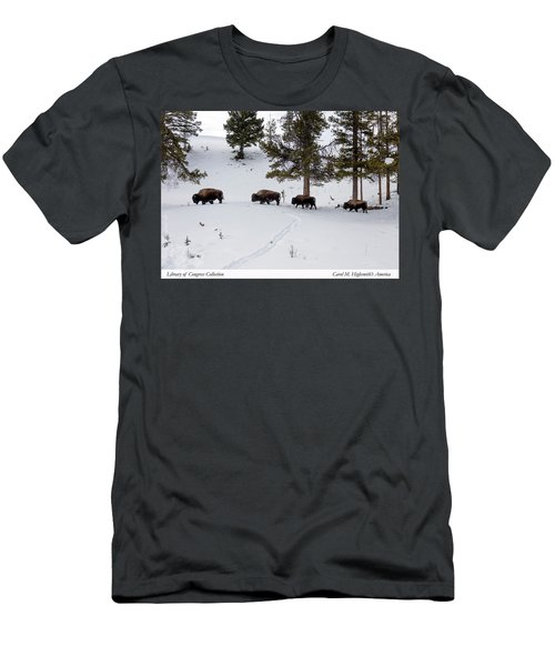 Men's T-Shirt (Slim Fit) featuring the photograph Buffaloes In Yellowstone National Park by Carol M Highsmith