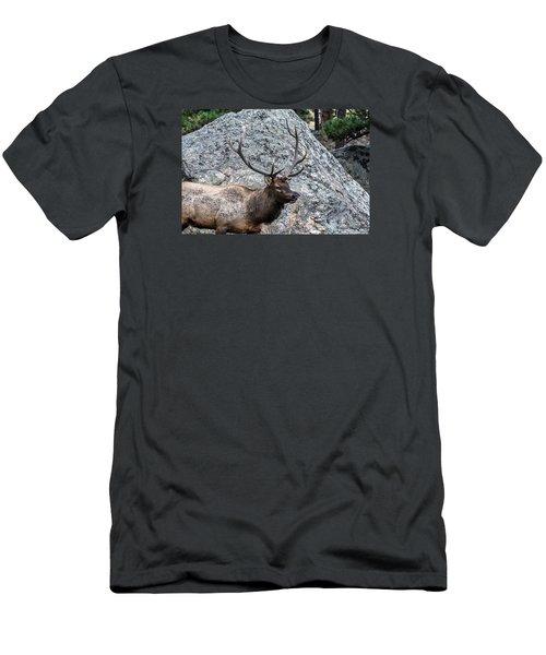 Bull Elk Granite Moss Rock Men's T-Shirt (Slim Fit) by Stephen  Johnson